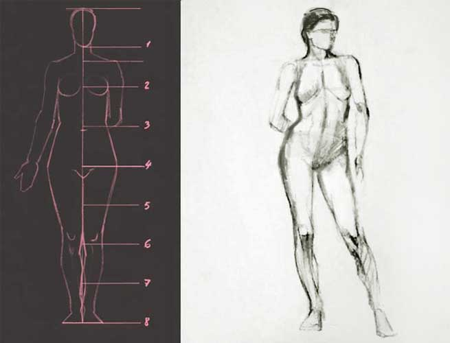 Female figure proportions drawing