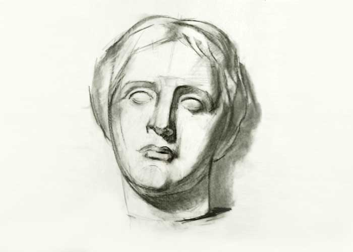 Face drawing of Venus de Milo